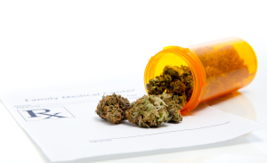 Los Angeles medical marijuana attorney