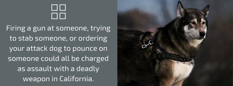Crimes in California
